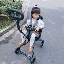Xe đẩy gấp gọn 2 chiều Baobaohao V3
